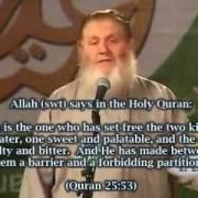 - A Catholic TV asked Yusuf Estes- Why he Converted to Islam!